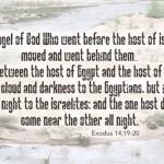 Red Sea Wisdom: Part II