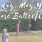 Chasing Butterflies…